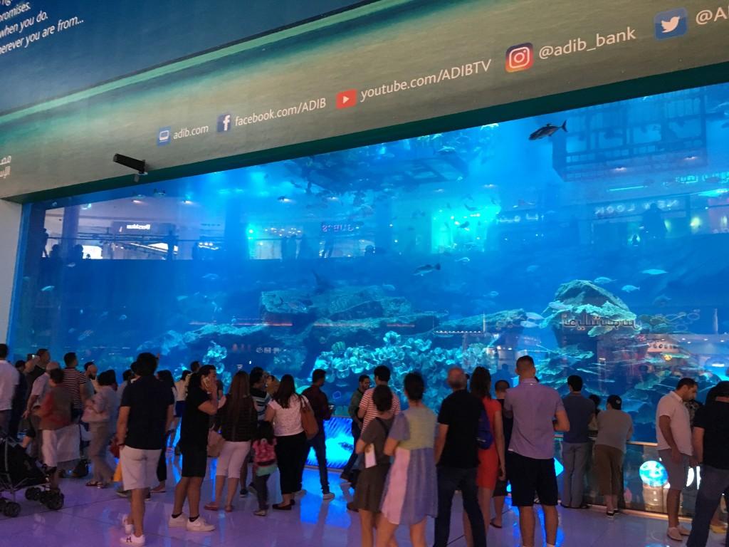 Гигантский аквариум в Дубай Молле