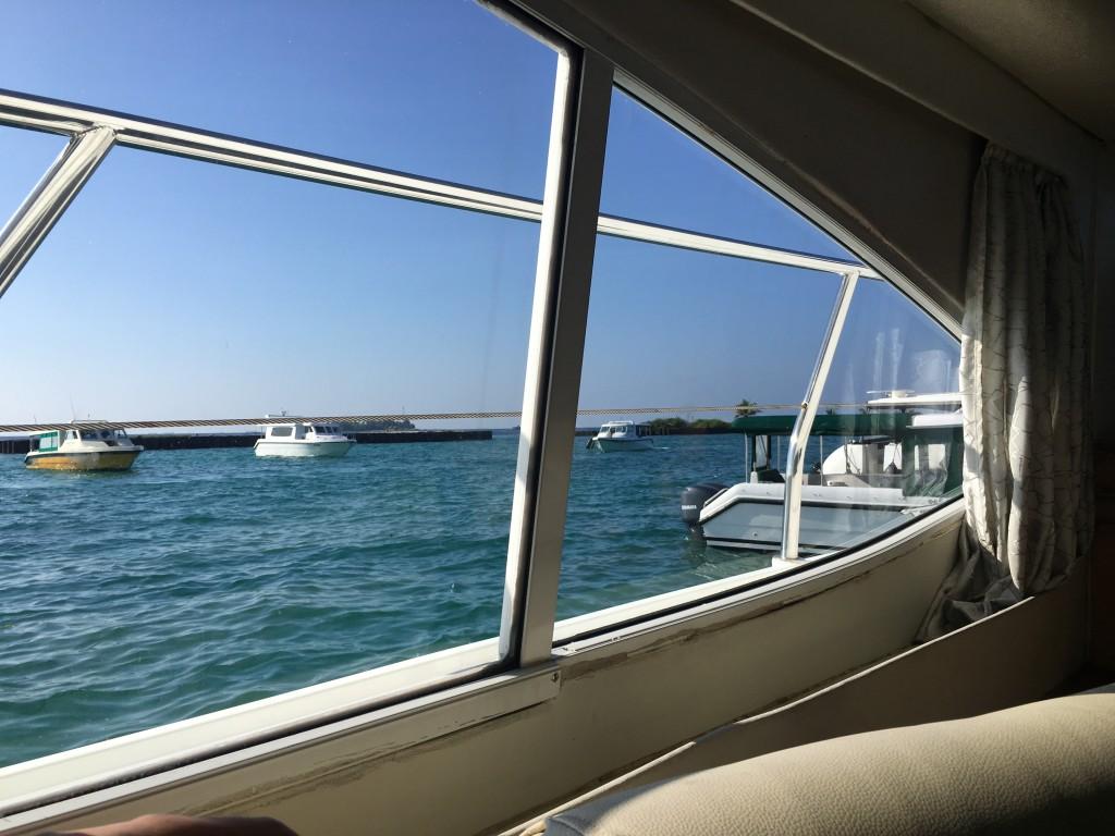 Плыть по спокойному морю очень приятно