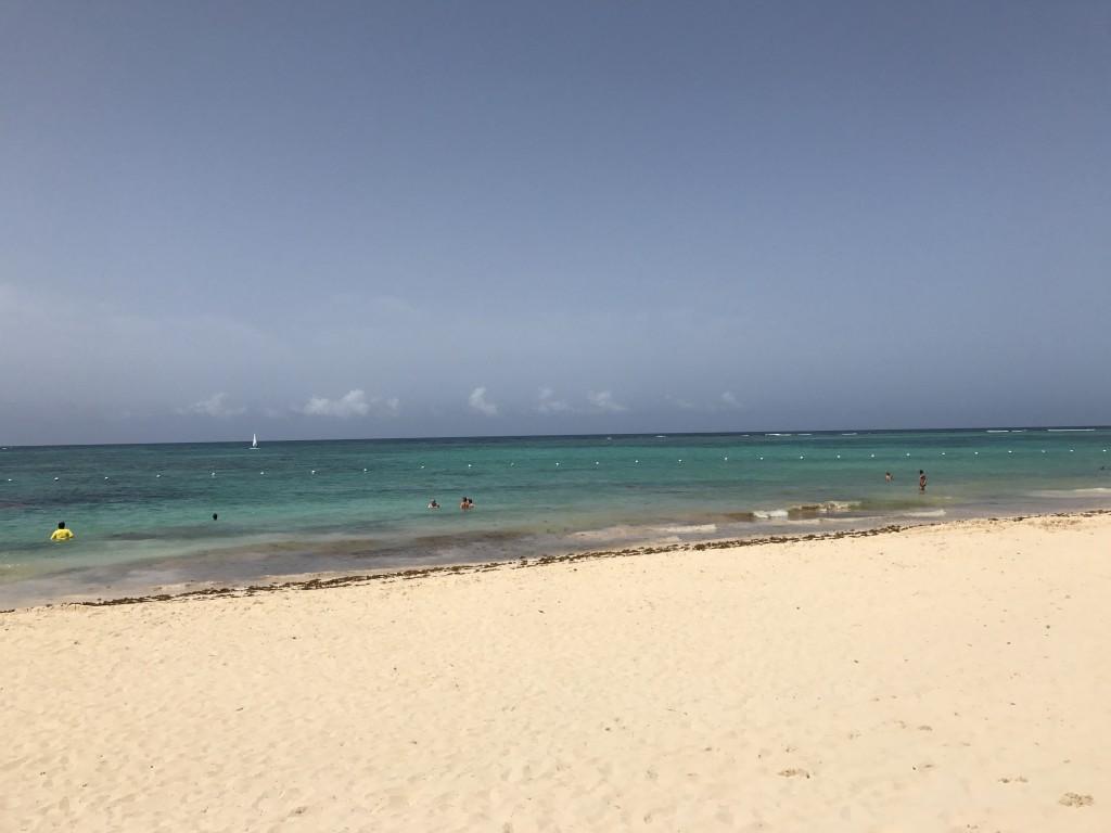 К началу дня пляж убирают, и водоросли могут остаться только при входе в воду