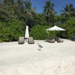 Мальдивы: как добраться из Москвы