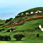 Почему деревня хоббитов из «Властелина колец» стала пристанищем овец