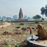 Английский язык в индии – туризм