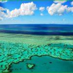 Большой барьерный риф национальный парк австралия фото видео