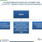Государственная экспертиза условий труда. цели, проведение