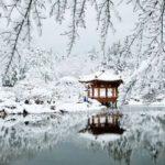 Южная корея зимой