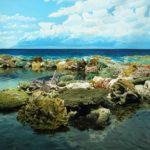 Острова большого барьерного рифа – о островах австралийского нацпарка