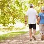 Отдых и оздоровление сердечнососудистой системы