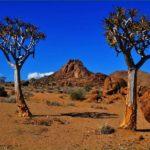 Парк великое лимпопо – африка – туризм