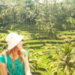 Путешествие на бали: террасы, вулканы, кофе из какашек