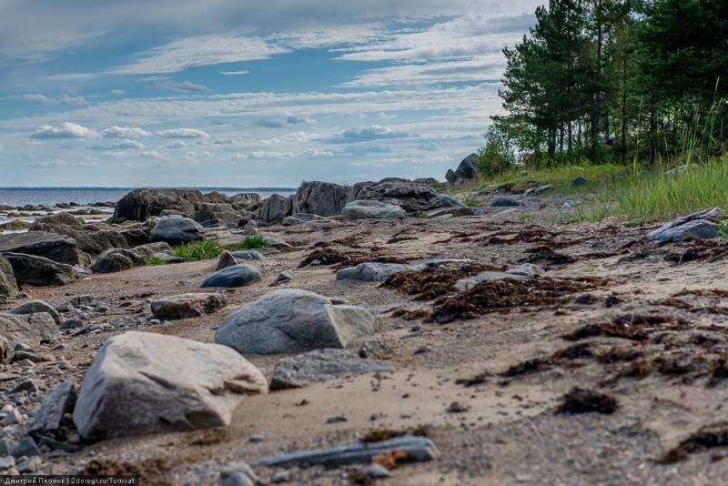 белое море фото берега довольно часто