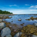 Путешествие на белое море – поездка в карелию к белому морю