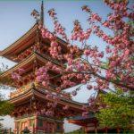 Путешествие по японии в апреле – самостоятельная поездка в киото к цветению сакуры