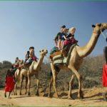 В кению с ребёнком – отдых в кении с детьми в августе